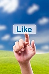 Like My Facebook Business Page